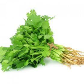Coriander-Leaf-India-bazar-thundi