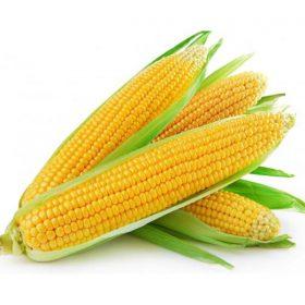 sweet-corn-bazar-thundi